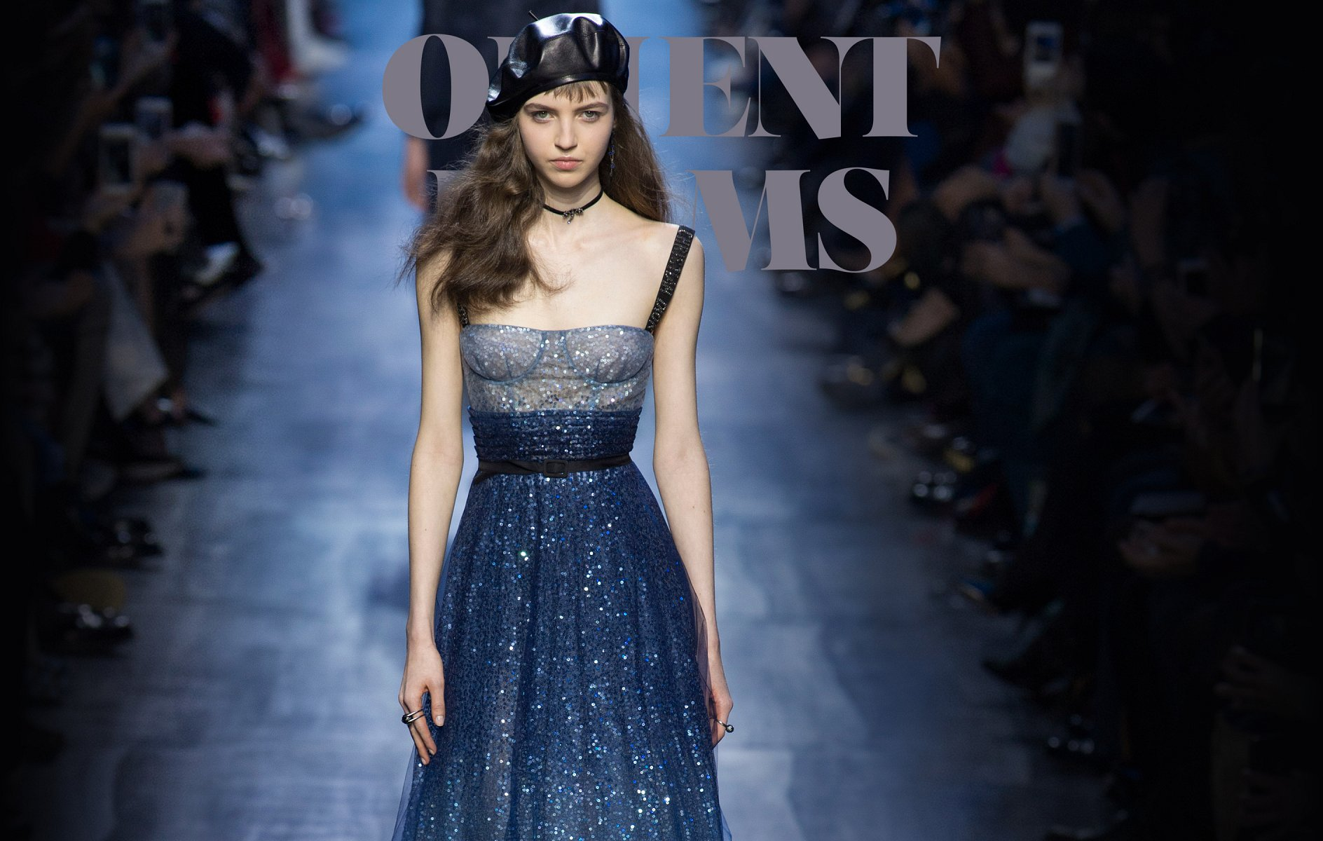 Christian Dior Fall-winter 2017-2018 - Ready-to-Wear